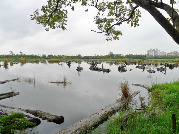 [遊誌]宜蘭縣羅東鎮.羅東林業文化園區 Luodong Forestry Culture Garden