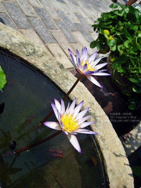 [遊誌]台南後壁.菁寮社區.無米樂故鄉 Jing Liao Community at Tainan Hou Pi(1)