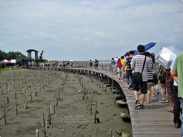 [遊誌]台南七股.七股潟湖 Qi Gu Lagoon