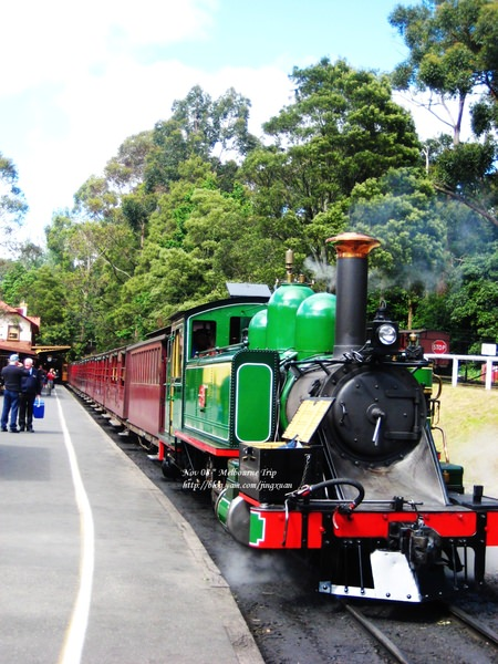 [遊誌]Puffing Billy:Outbound Train