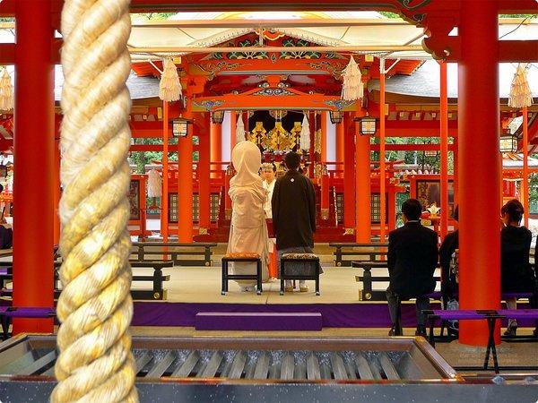 [日本遊誌]Kobe:稻荷神社、生田神社(Ikuta Shrine)