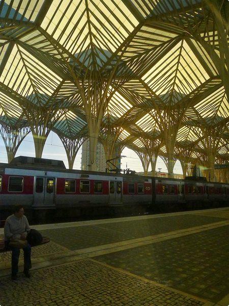 [葡萄牙食遊記] Lisbon Lounge Hostel 里斯本住宿早餐 餐後出發到波爾圖-如何從里斯本搭火車到波爾圖交通? Train from Lisbon to Porto